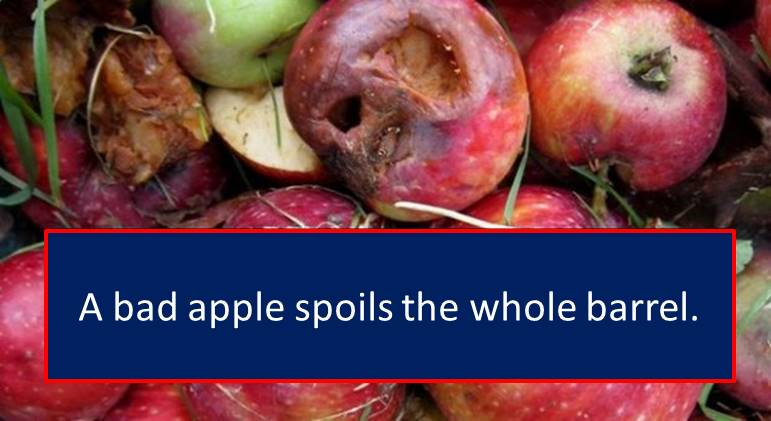 bad_apple